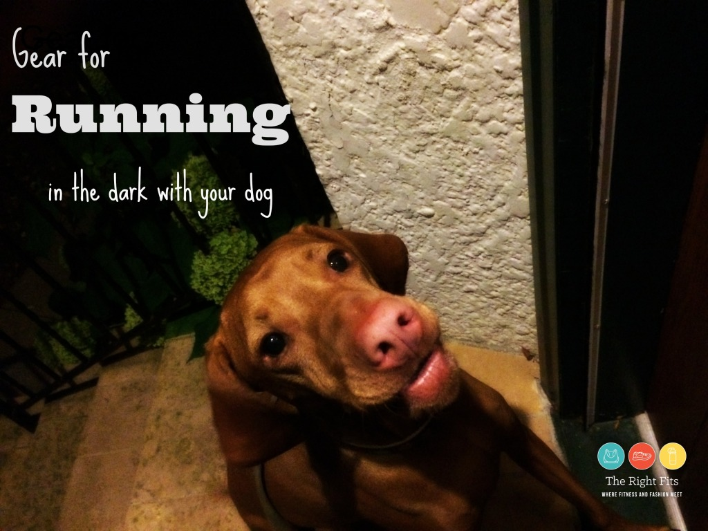 darkrundog