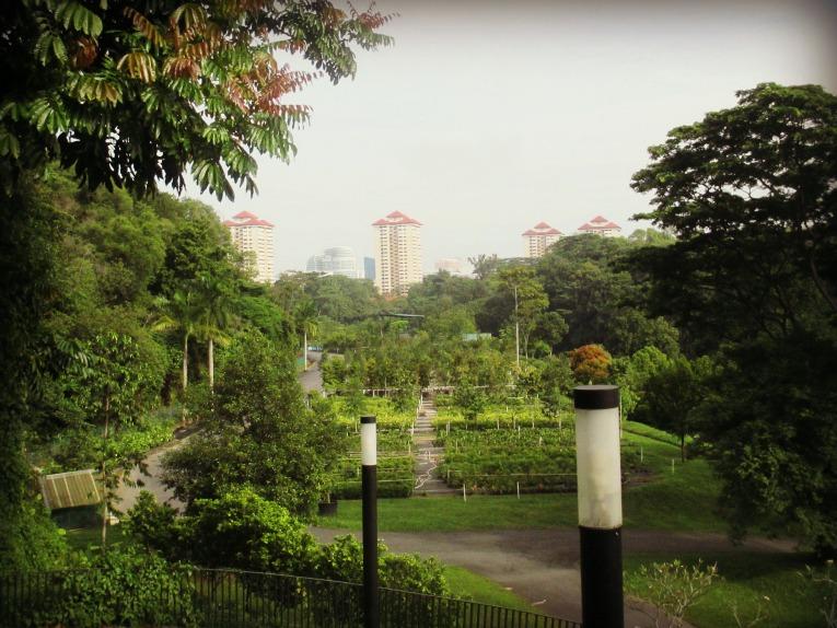 canopypark