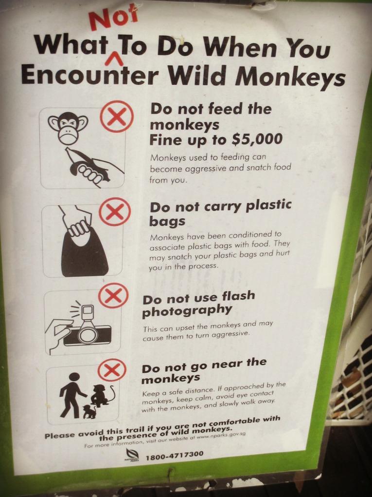monkeyrules