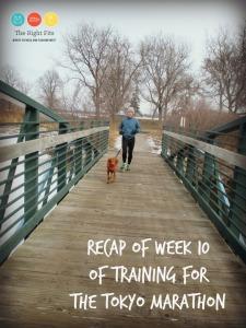 Week 10 of Training for the Tokyo Marathon & Sound Probiotics