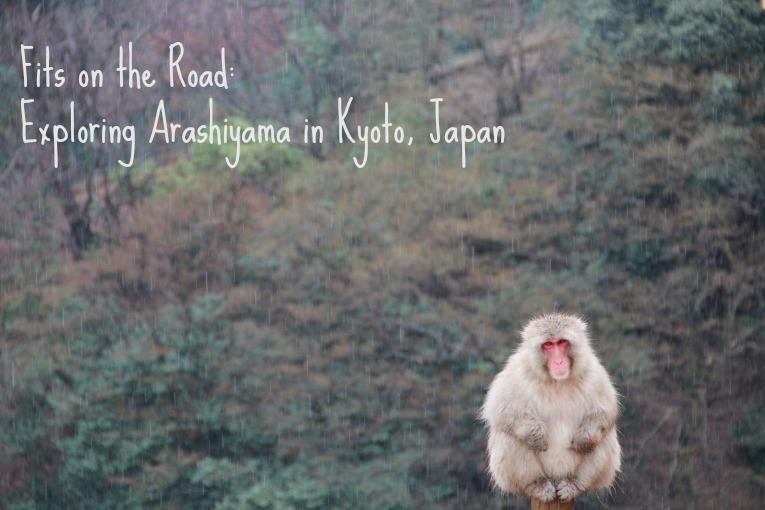 arashimiyamamonkey3