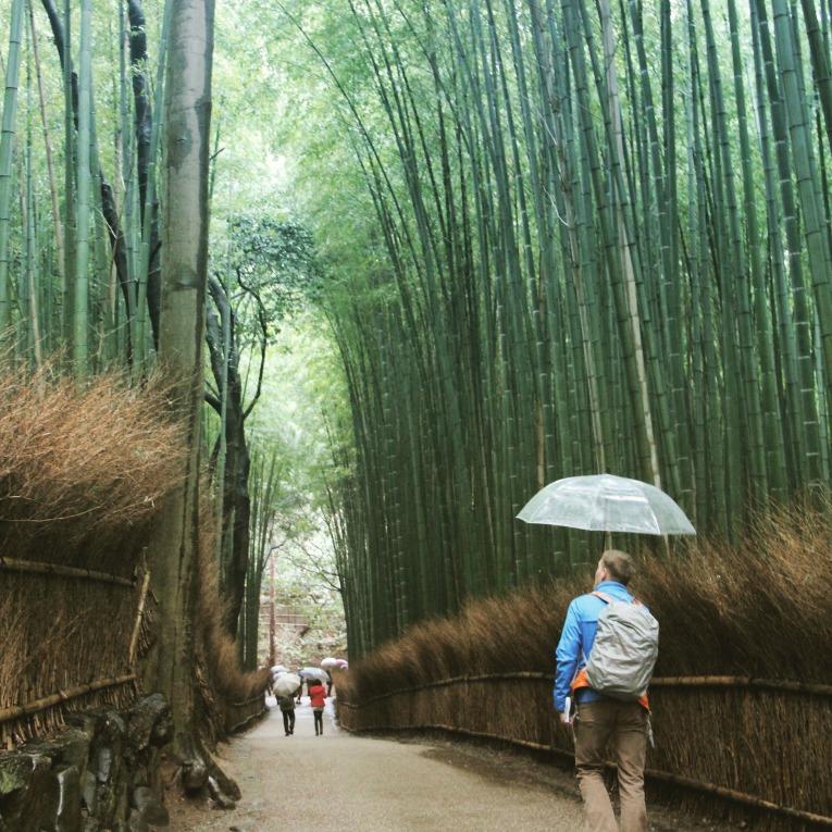 bamboogarden3