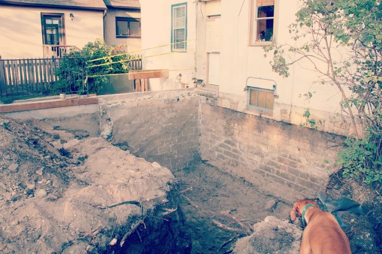 hole in yard