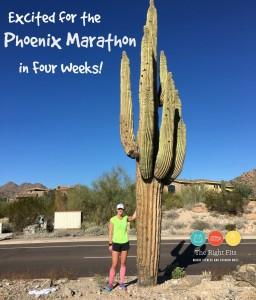 Weekly Recap: 4 Weeks Until the Phoenix Marathon!