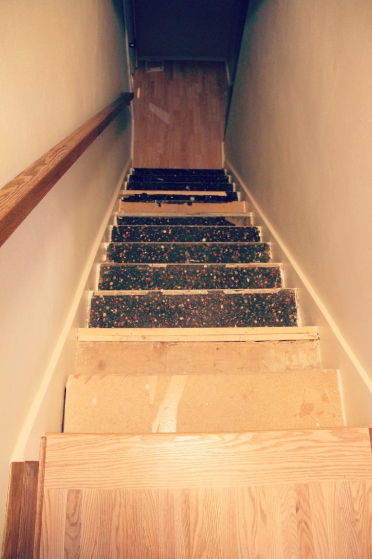basement stairs 1