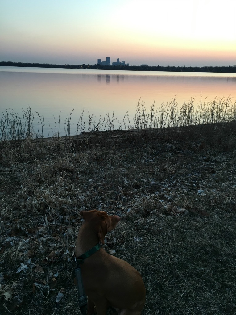 Lake Calhoun run