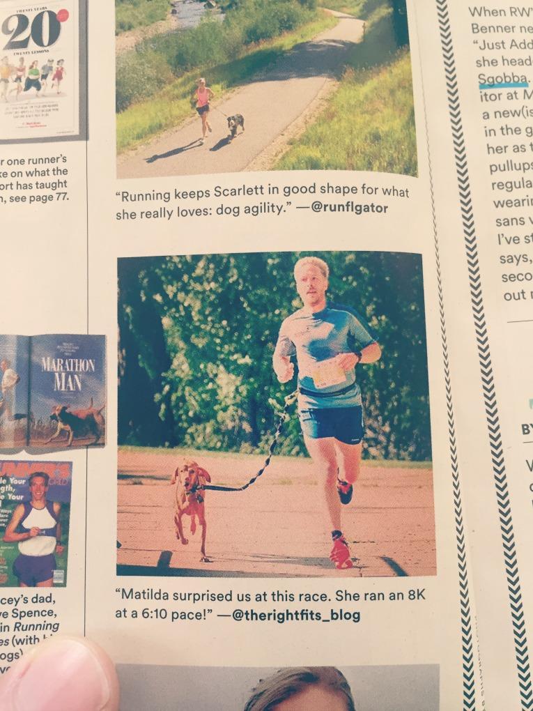 Vizsla Runners World
