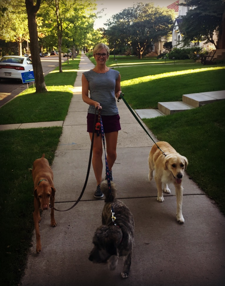 walking-the-dogs