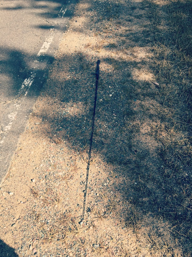 fishing-pole