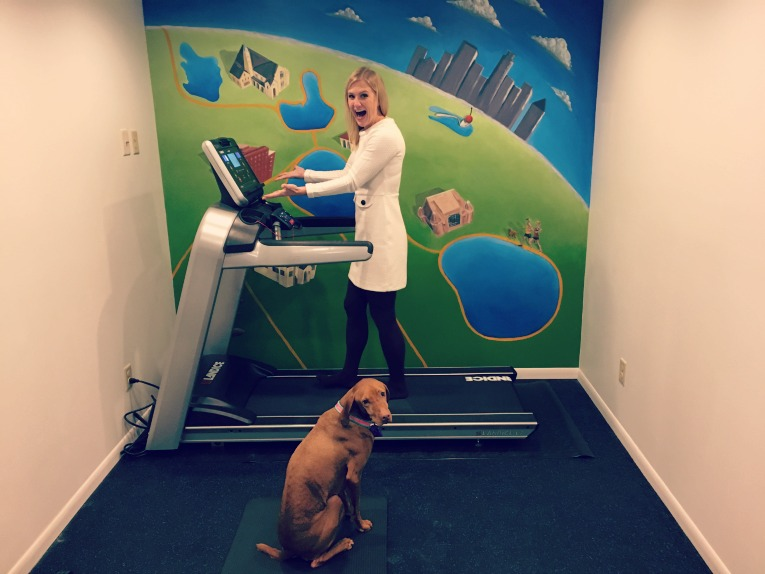 new-landice-treadmill