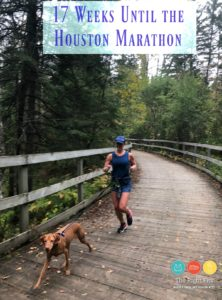 17 Weeks Until the Houston Marathon & Camping at Itasca!